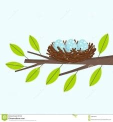 Описание: Картинки по запросу картинки гнезда на дереве клипарт