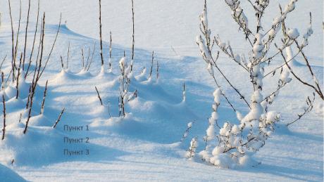 Шаблон презентации «Зимний пейзаж»
