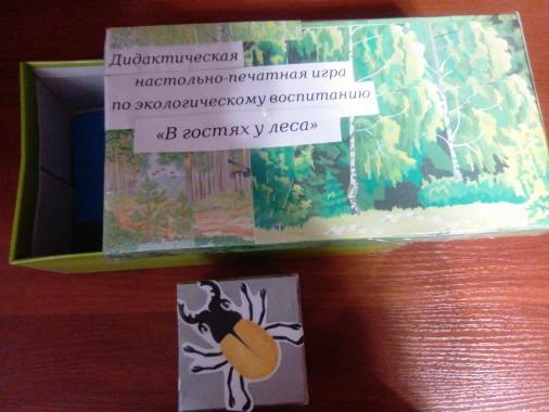 Дидактическая игра по экологическому воспитанию для старших дошкольников в детском саду «В гостях у леса» для старших дошкольников