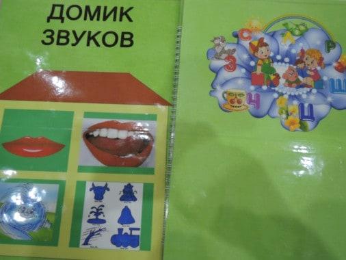 Биоэнергопластика для детей с ОВЗ. Пособие для логопедов с использованием здоровьесберегающей  технологии – биоэнергопластики, для детей с ОВЗ, старшего дошкольного возраста.