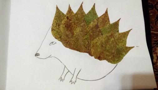 а это листья с тополя и тополиный ежик