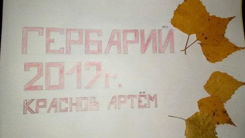 Скачать - Учителю дефектологу: Познавательно-творческий проект для воспитанника с ОВЗ « Мой гербарий».