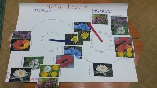 Макет «Цветы-часы» созданный в ходе проекта