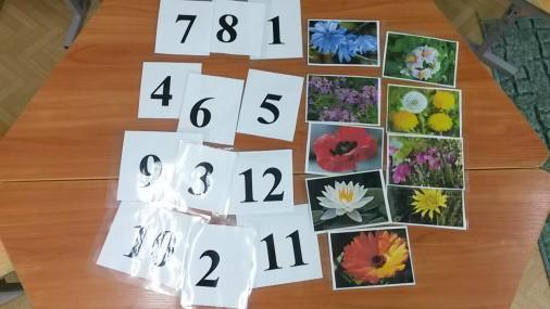 Дидактические игры созданные в ходе проекта «Раз, два, три, цветы-часы назови», «Раз,два,три,время покажи».