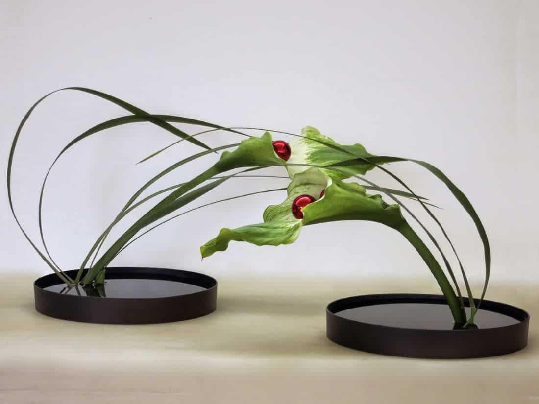 ikebana-art4